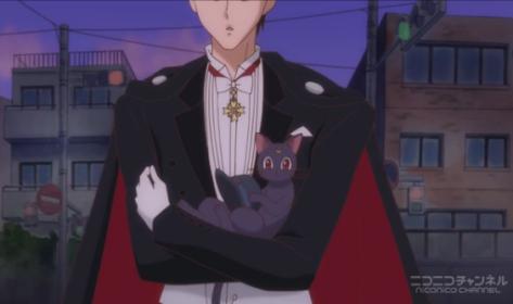Tuxedo Kamen e molto utile nel caso vogliate lanciarvi contro un autobus con un gatto in braccio e il gatto vi cada.