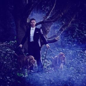 Focus On | Benedict Cumberbatch, il ragazzo dagli occhi Blu-Verde-Grigio