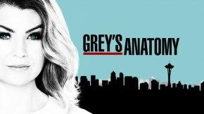 News | Tutti Gli Ultimi Spoiler Su Grey's Anatomy 14: Addii, Nuovi Arrivi e TriangoliAmorosi