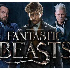 News | Animali Fantastici 3 si sposta inBrasile